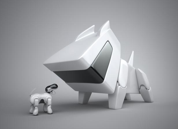 CAM / Robot Dog