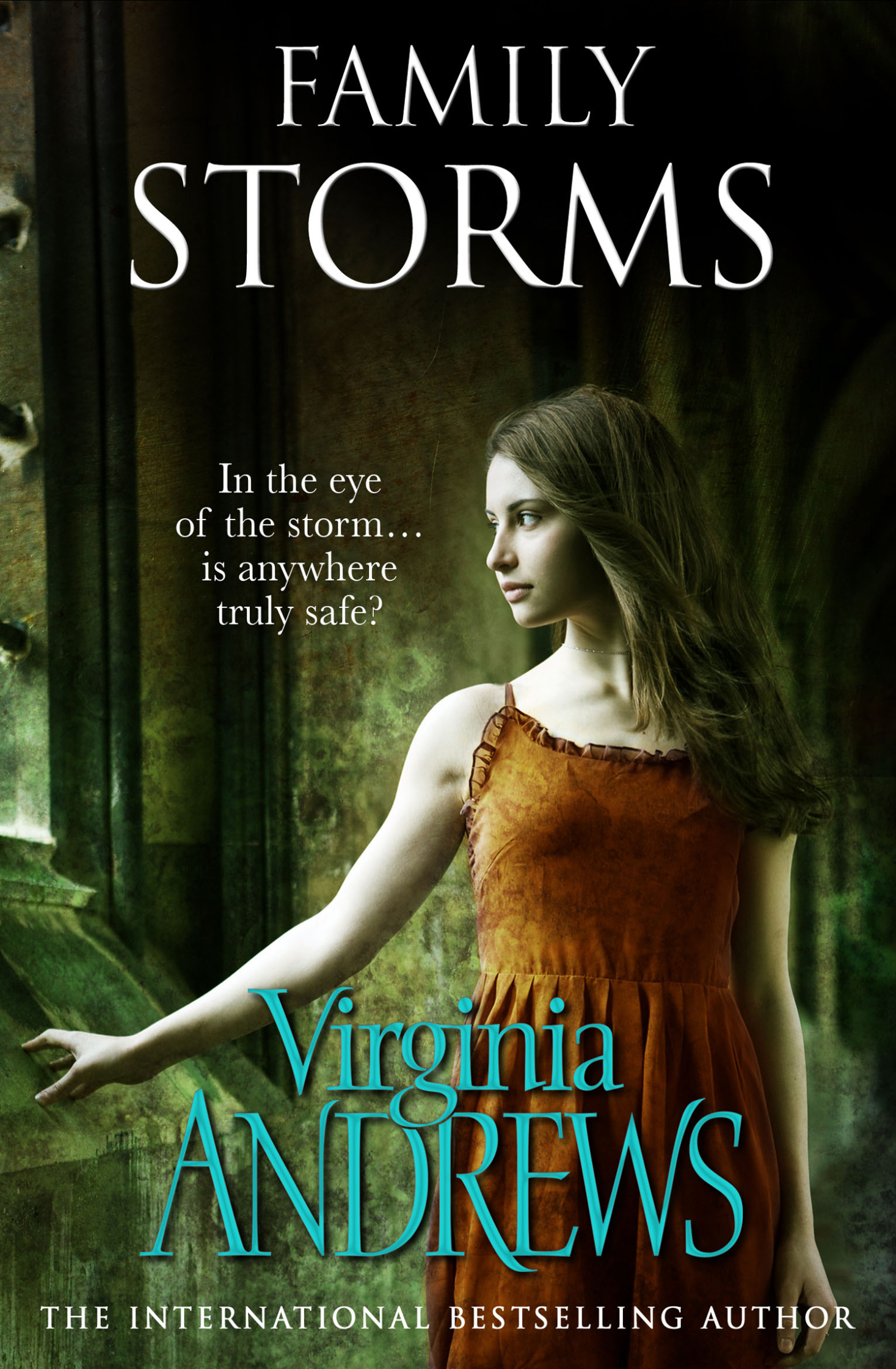 Family Storm / Virginia Andrews