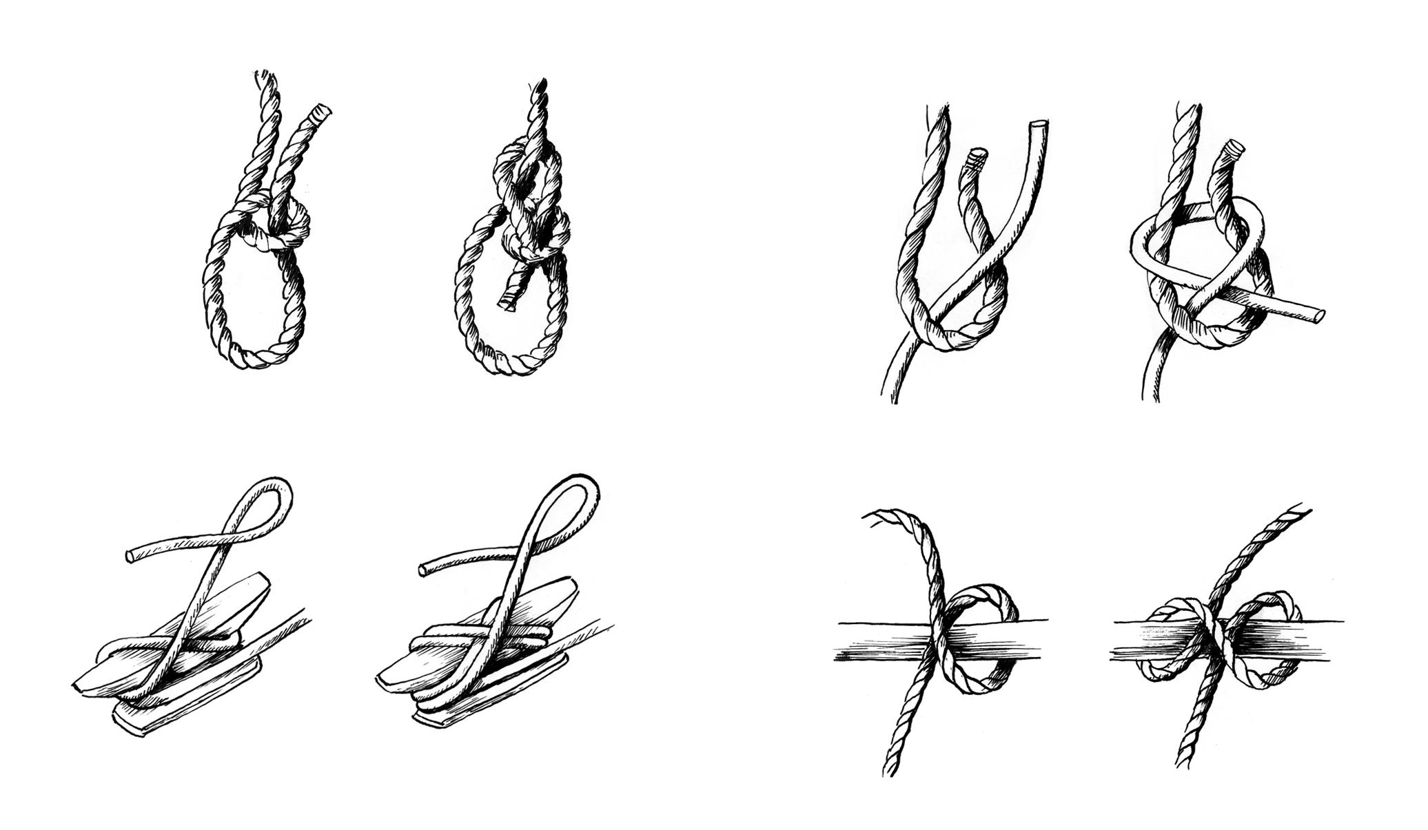 KnotsTelegraph.jpg