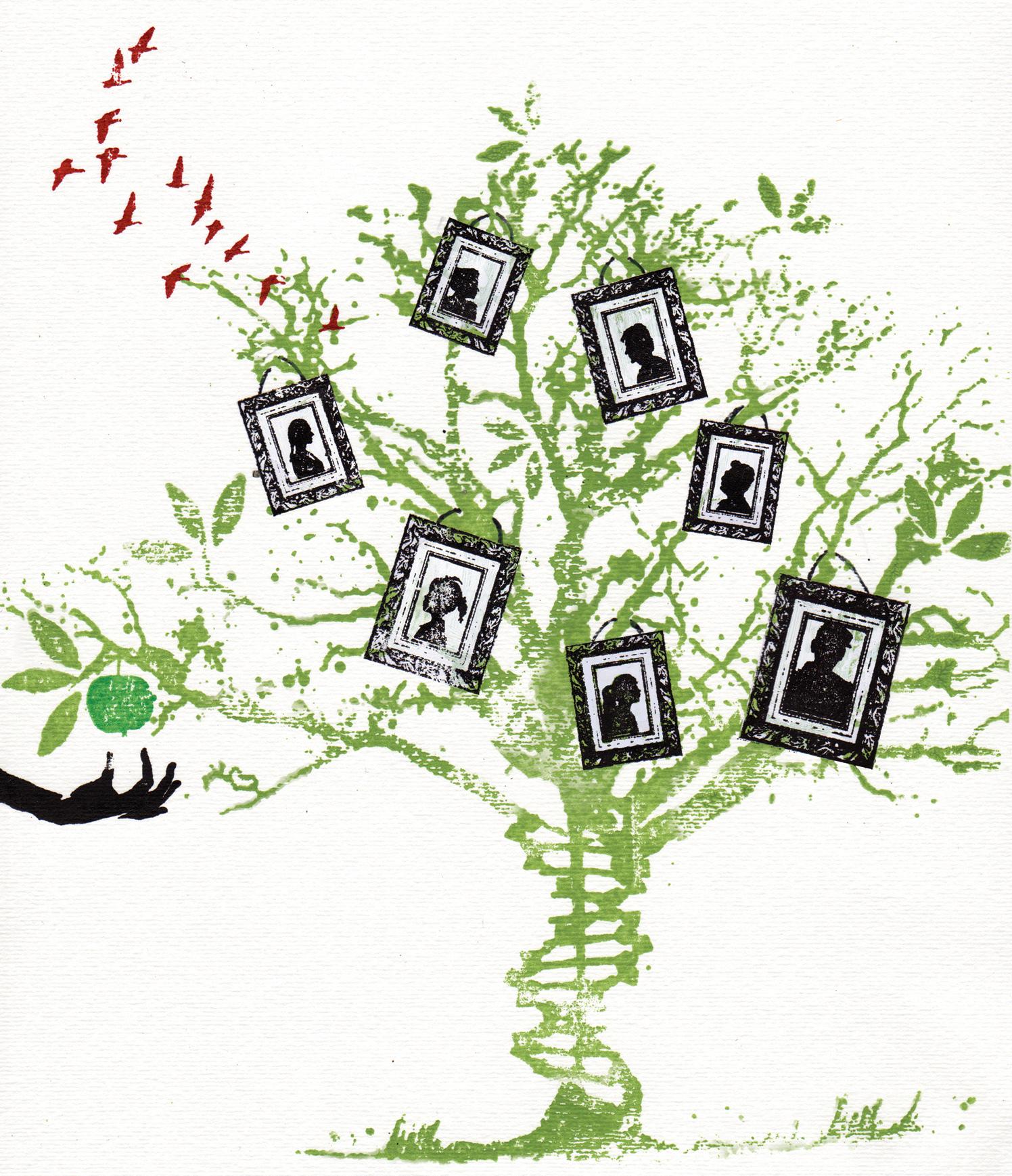 Family Tree The National