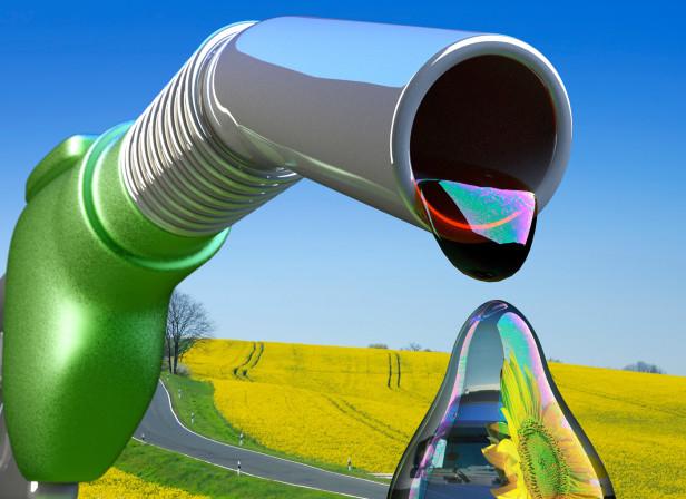 Biofuel Diesel Environment