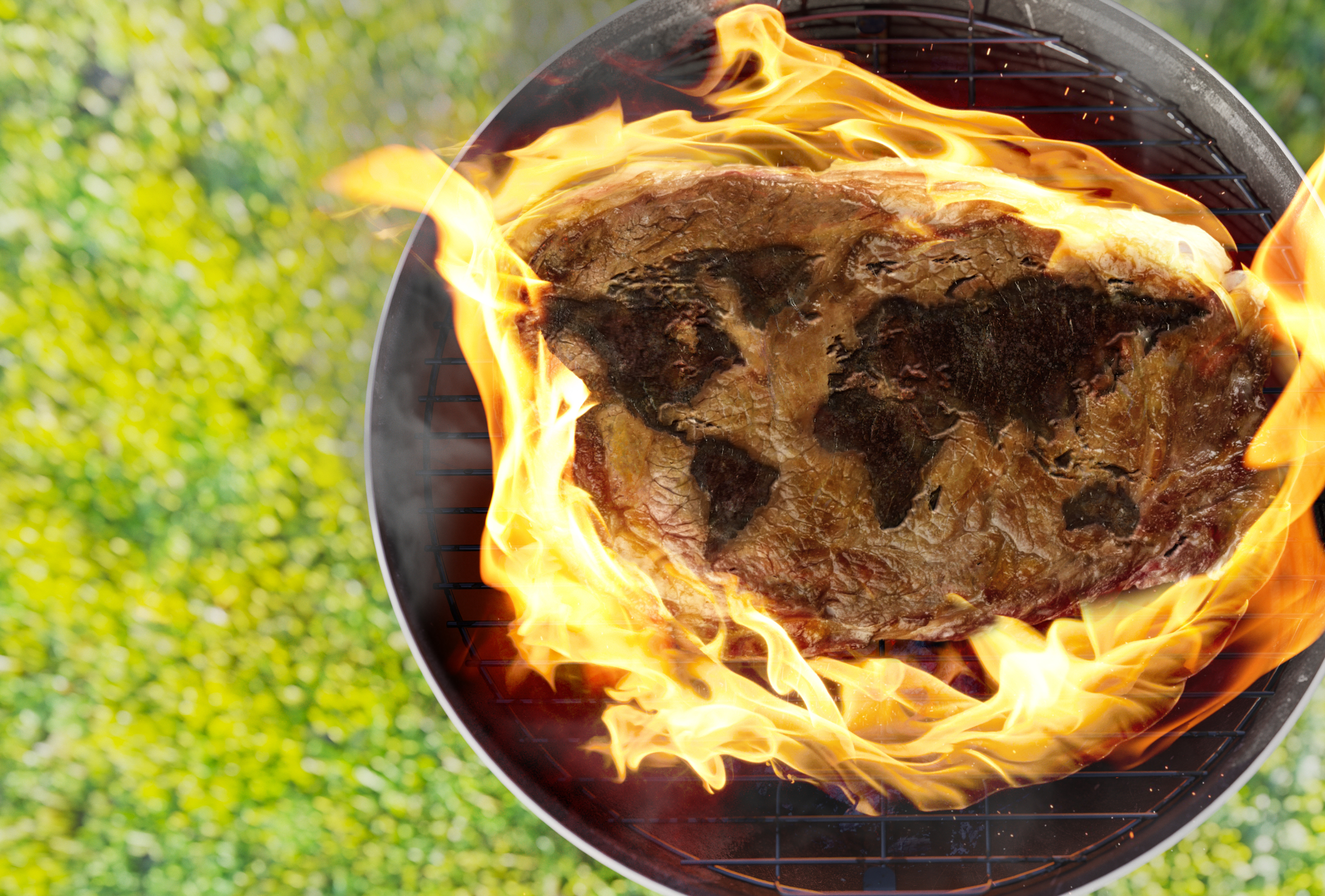 bbq steak v3 higresRGB.jpg