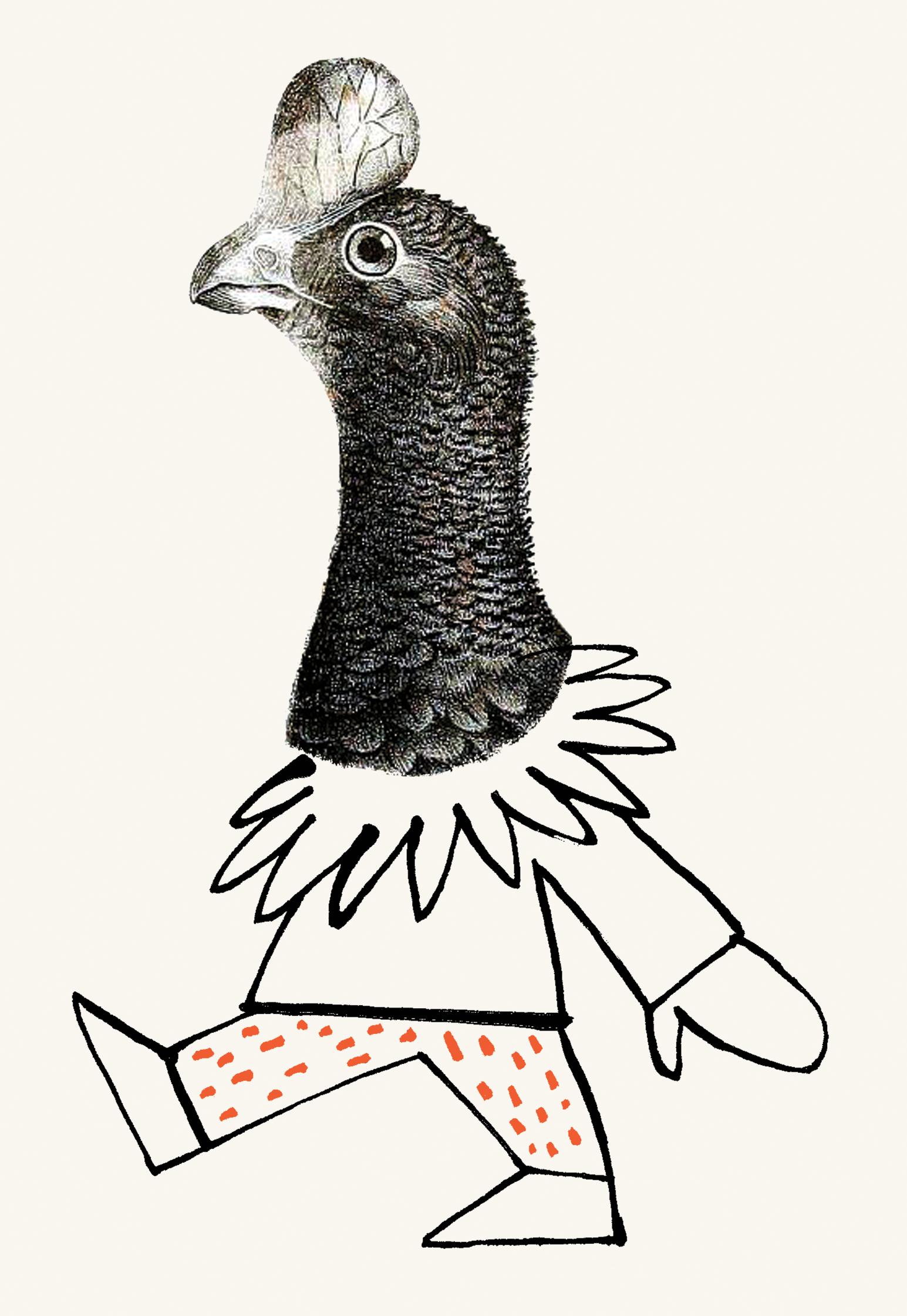 Streich-collage-chicken-suit.jpg