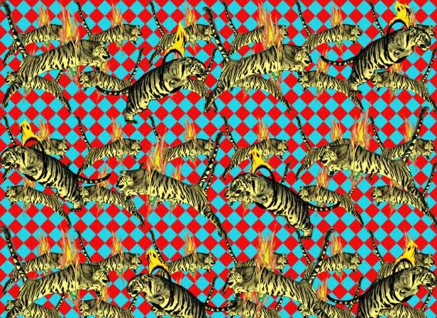 Circus Tigers Molo Kids