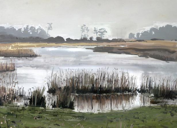Yarmouth Wetlands