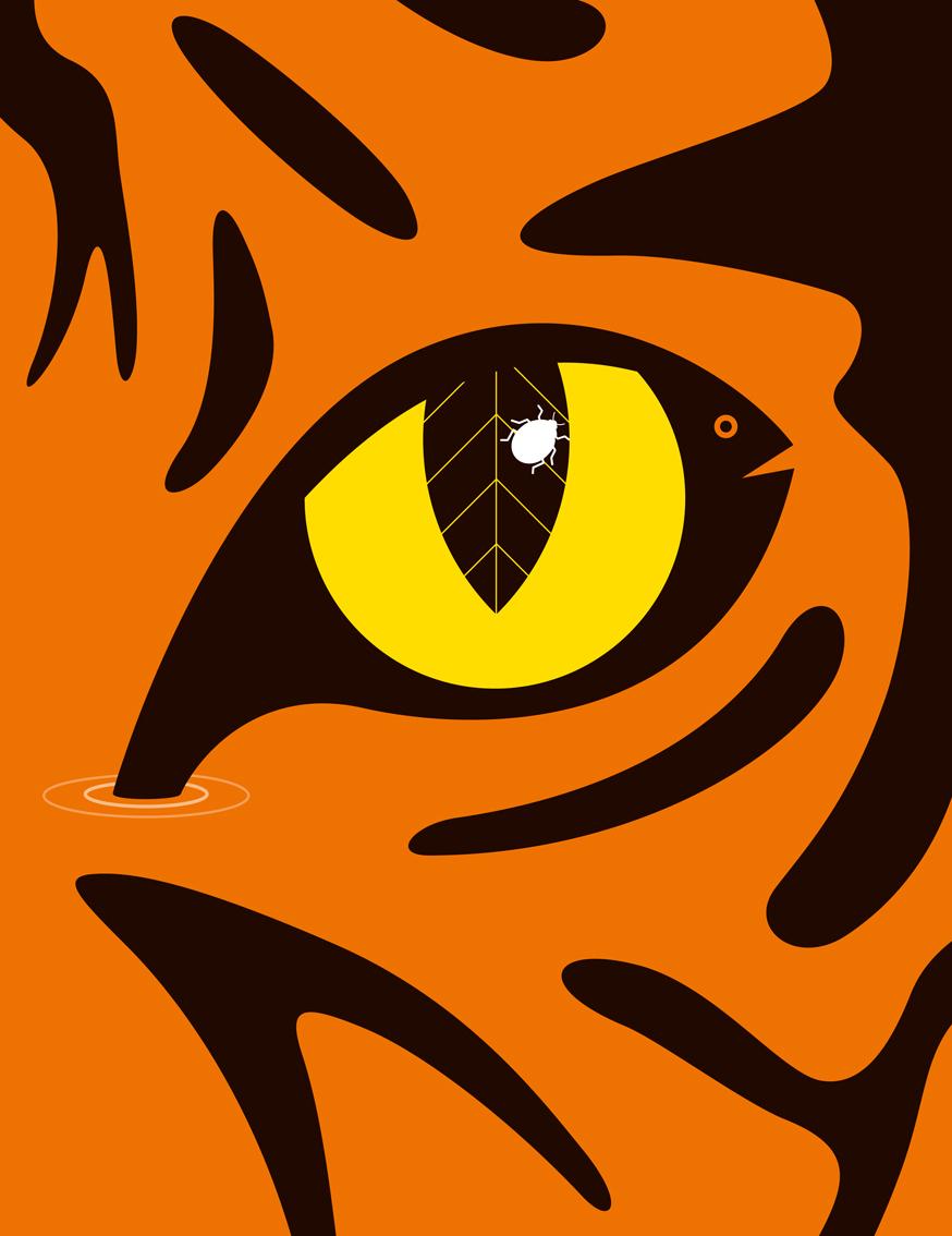 biodiversity-bbc-wildlife-magazine2.jpg